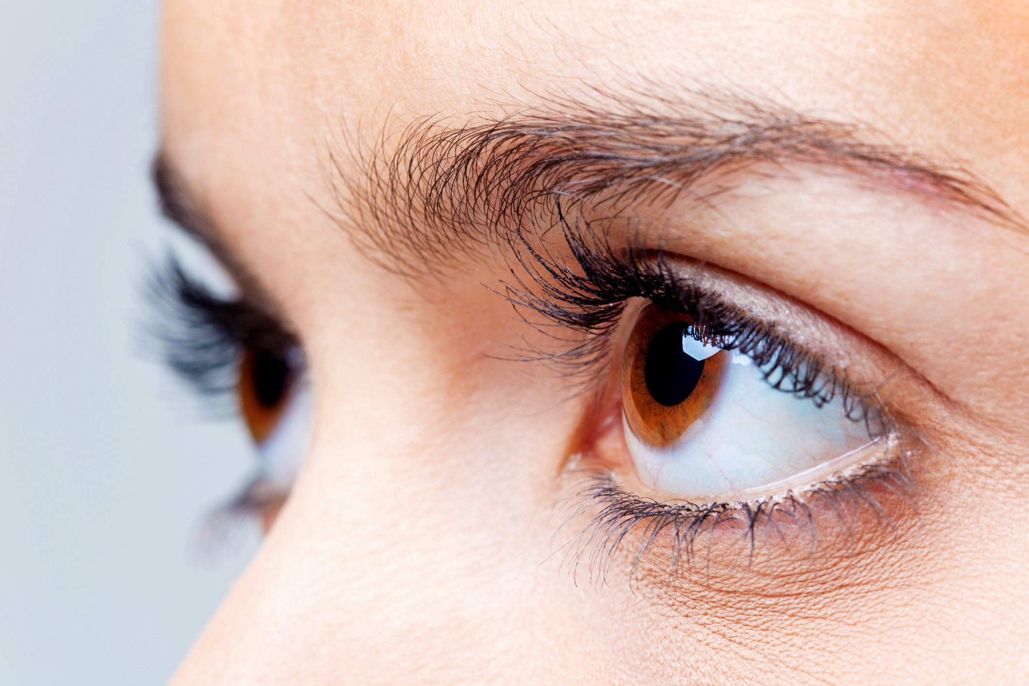 "Search Results for ""eyelash growth"" – Amalie Blog"