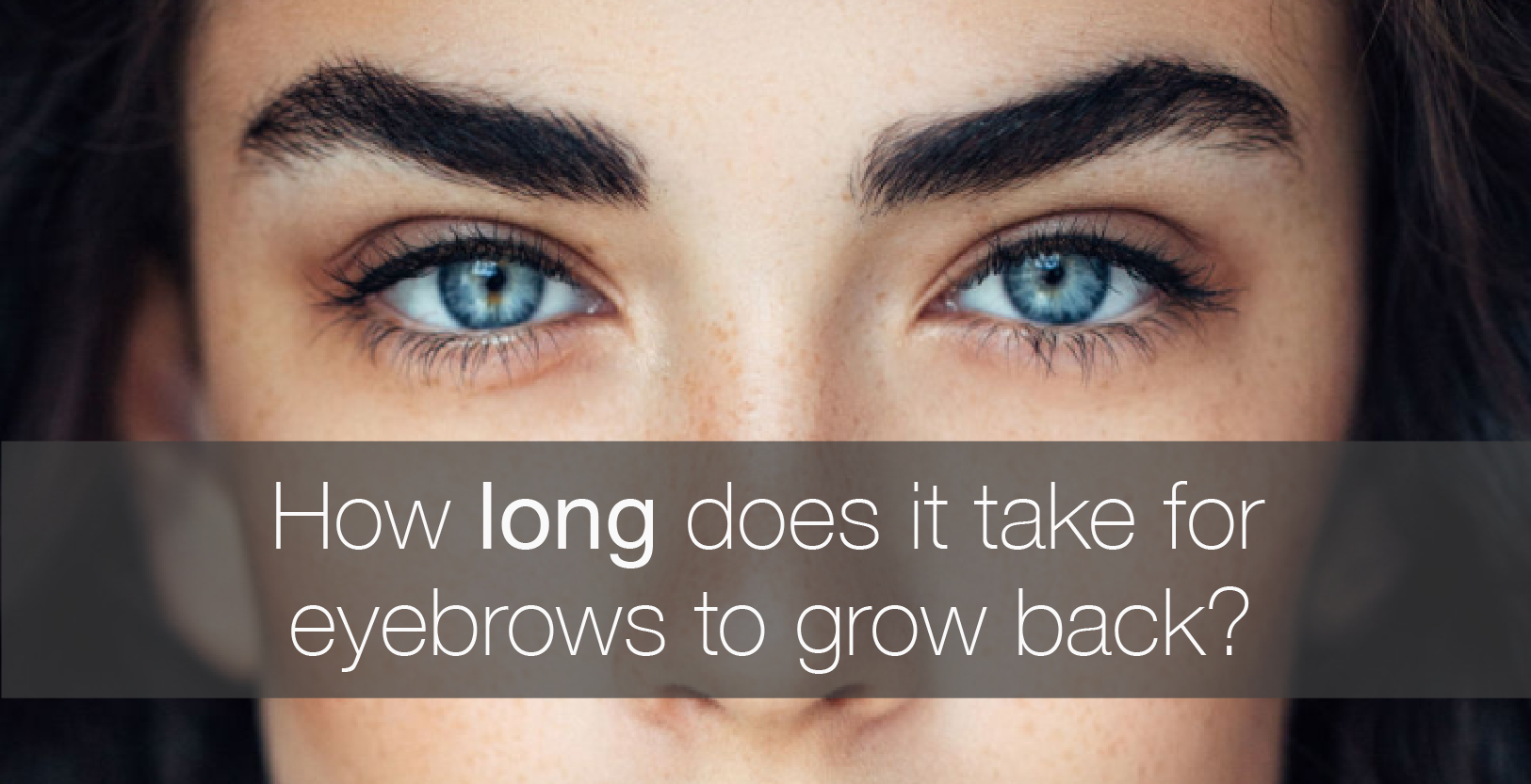 how long does it take for eyebrows to grow back amalie blog. Black Bedroom Furniture Sets. Home Design Ideas