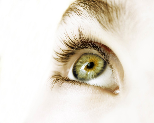 BLOG POST: HOW LONG DOES IT TAKE EYELASHES TO GROW BACK ...